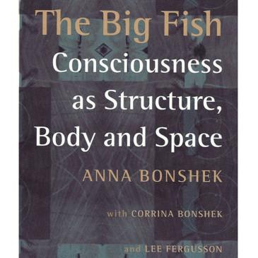 The Big Fish by Anna Bonshek